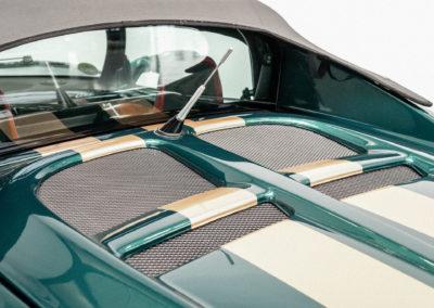 Lotus Elise S1 VVC MMC grün metallic mit goldenen Race Streifen Detail Heck